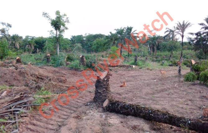 Obudu Cargo Airport Project: A Good Time To End The Omerta Code Of Silence BY DR. E. USHIE